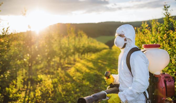 фермер в градина пръска за плевели