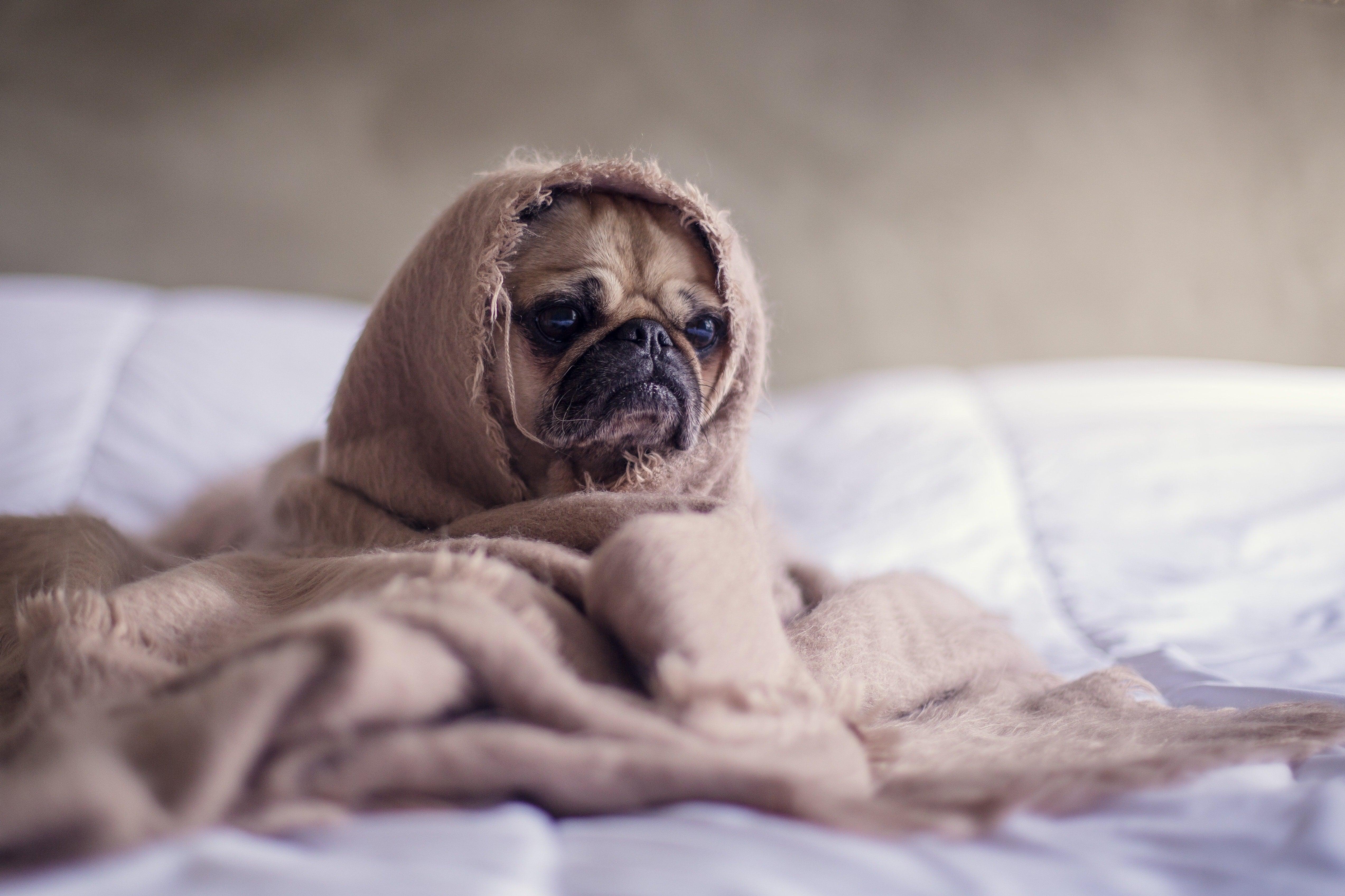 Защо не се наспиваме: Топ 5 най-чести причини